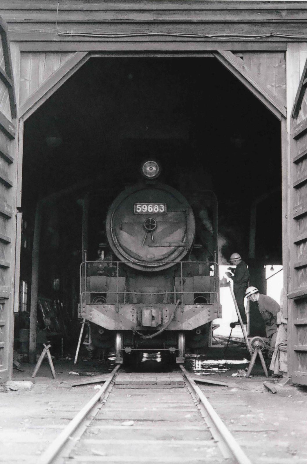 19728006